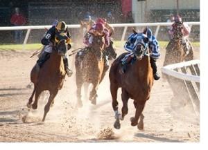 fab friday blog share derby